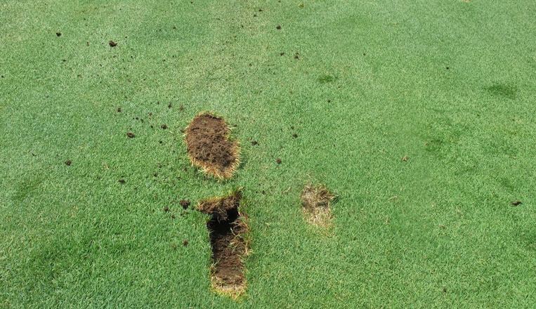 Divots from Golf Swing Types and Bounce