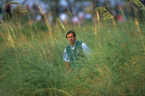 seve-in-the-weeds